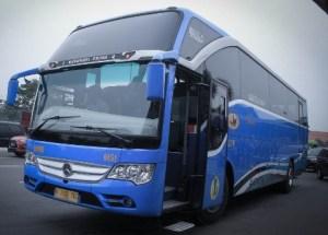 Bus Pariwisata Damri