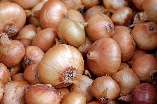 How Many Carbs In Grilled Onions,