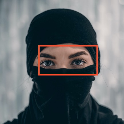 Image showing face detection for a subject wearing a niqab