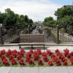 らん蘭橋の花