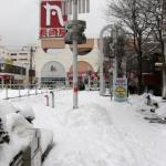 大雪・・・そして翌日。