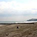 イタンキ浜の鳴り砂看板