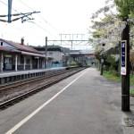 桜めぐり 2011 (母恋駅)