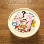 室蘭カレー味 生キャラメル