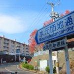 最近の散歩 (水元町)