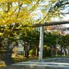中嶋神社の紅葉
