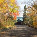 八幡さんの紅葉 2015