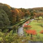 北公園の秋風景