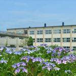 紫陽花のある風景 2020(天沢小学校)