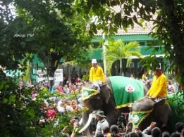 gajah dalam upacara ini adaah sebagai pegawal iring-iringan gunungan