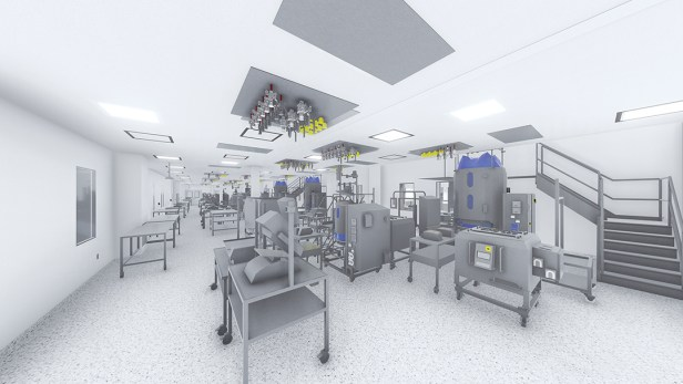WEBCell culture rendering