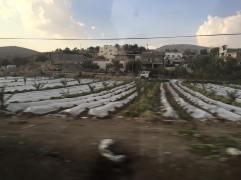 Driving through the West Bank
