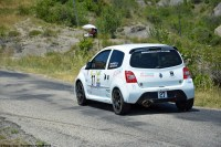 ranwhenparked-rally-laragne-renault-twingo-1