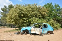 ranwhenparked-peugeot-205-3