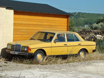 ranwhenparked-mercedes-benz-w123-240d-yellow-1