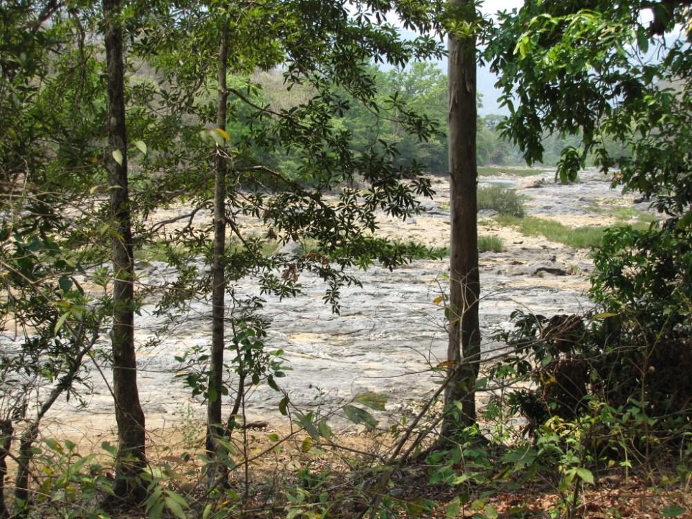 Trek from Jenukallu Gudda to Shivaganga falls (2/6)