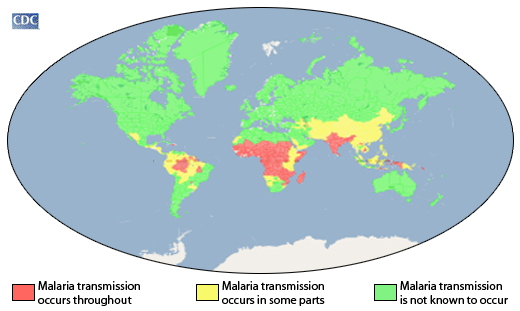 Transmission pattern of malaia worldwide