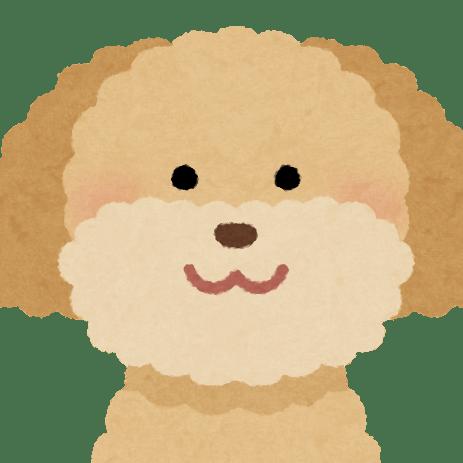 cropped-dog_toypoodle_cream