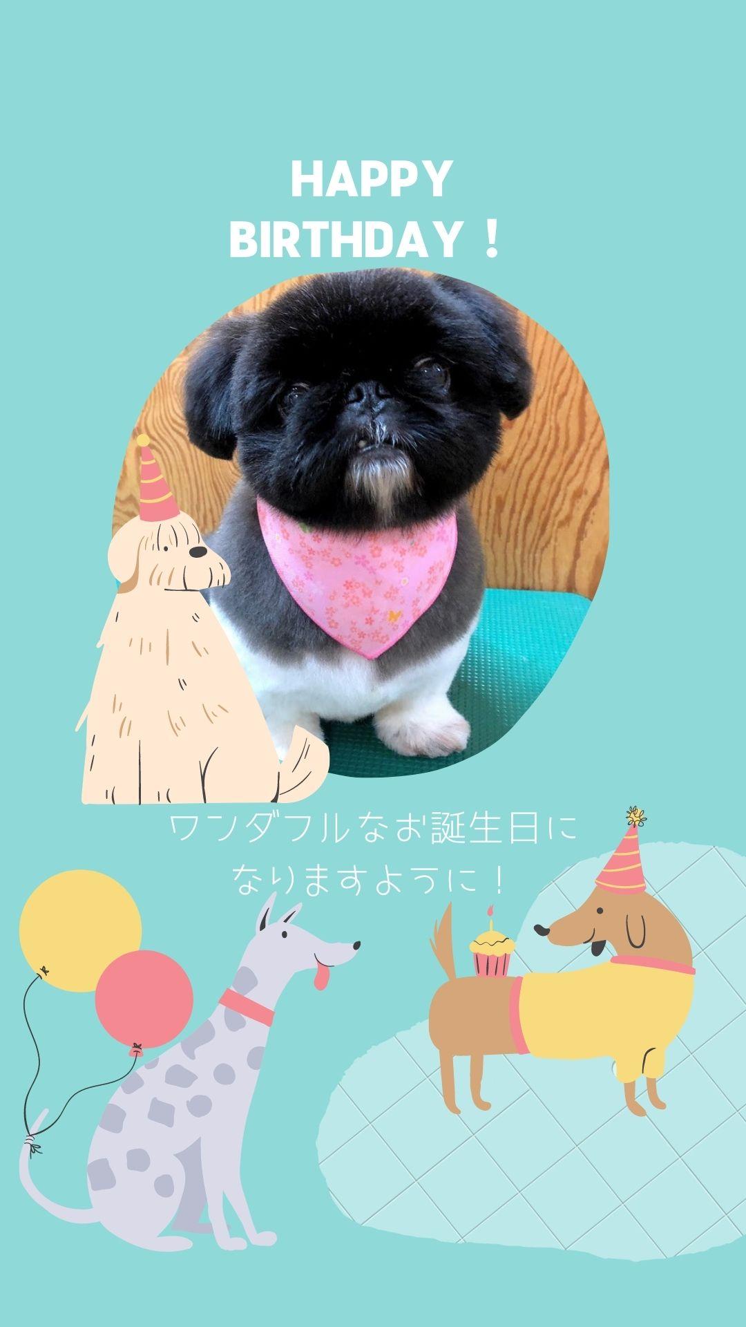 シアン-犬-かわいくて風変わりなイラスト-誕生日用Instagramストーリー-1