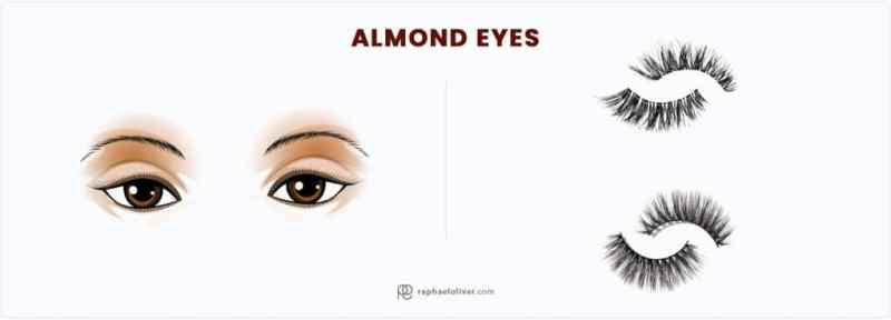 eyelash-for-almond-eyes