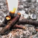 Makro-Feuer auf Stein