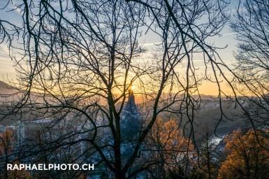 Aussicht auf die Altstadt Bern vom Rostengarten aus während dem Sonnenuntergang durch einen Baum