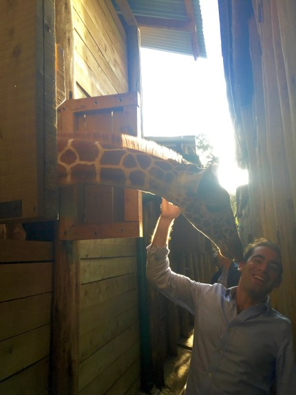 I really don't know what is is with giraffes, but apparently I'm simply irresistable!