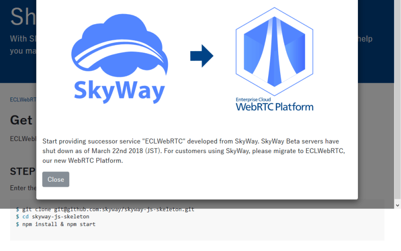 SkyWay JavaScript API