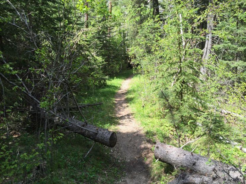 Black Hills Trails_Little Black Elk