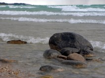 Beach boulders awaiting the impending storm