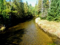North Branch of the Au Sable River