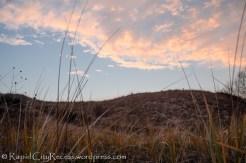 Point Betsie dunes