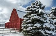 Stone Gate Farm - Red Barn-2