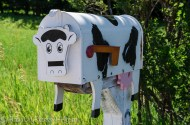 Fun mailbox