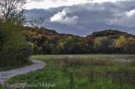Hickory Meadows