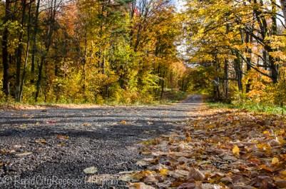 road between rains-2
