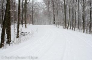 along the path-2