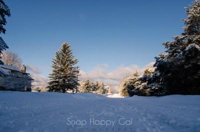 fresh snow-7