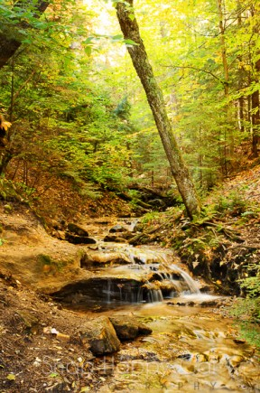 trailside falls