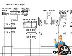 Harley Softail Wiring Diagram Diagrams Wiring Diagram Images
