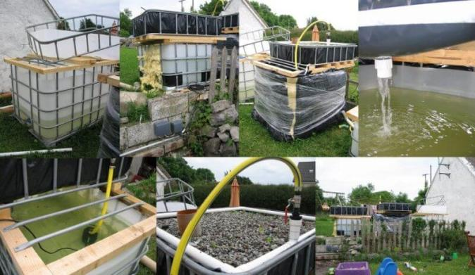 aquaponics construction process