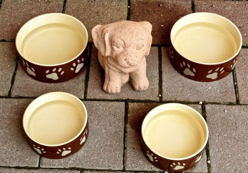 Bake A Dog A Bone - stature of a dog and bowls around
