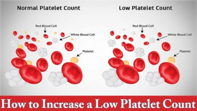 how to increase a low platelet count