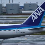 Experience the US the Japanese way with ANA Mileage Club discounts