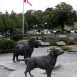 Newfoundland and Labrador Canada