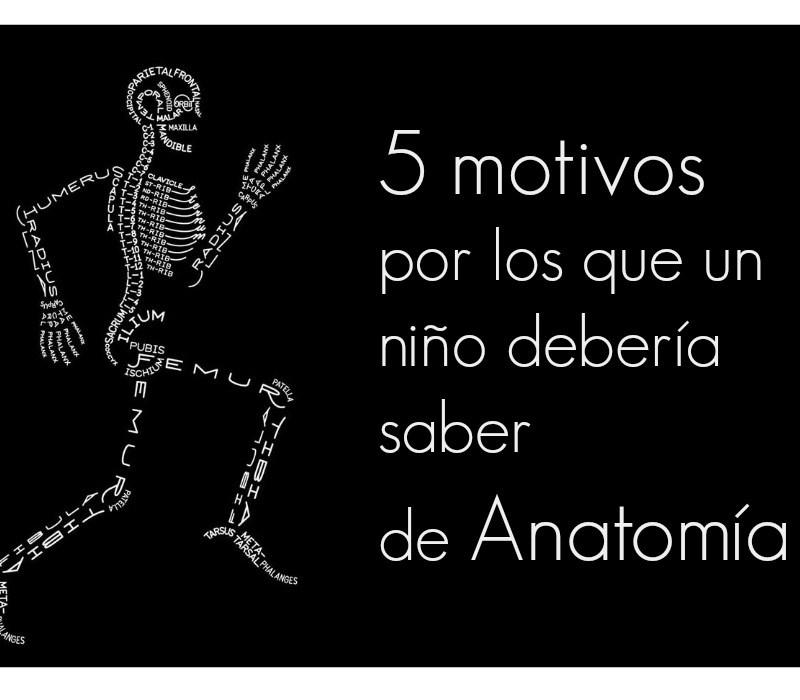 5 motivos por los que un niño debe saber de anatomía