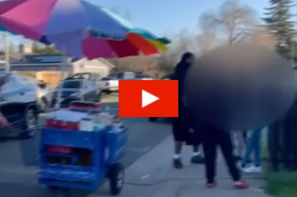 WATCH : Rude Customers Harass Poor Street Vendor by Knocking Her Cart Over