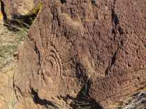 rock art in Baja Sur