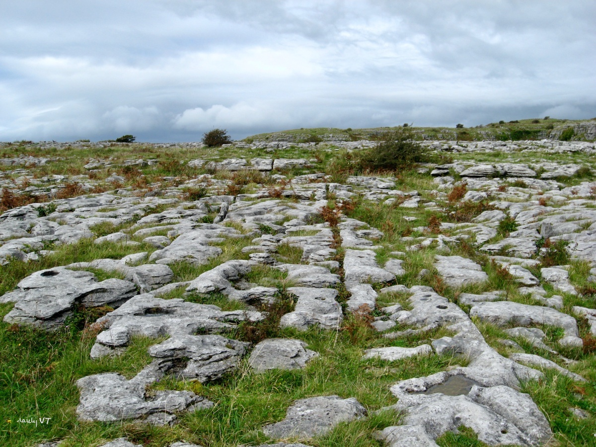 Ireland the Burren