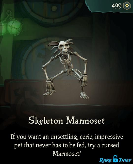 Skeleton Marmoset